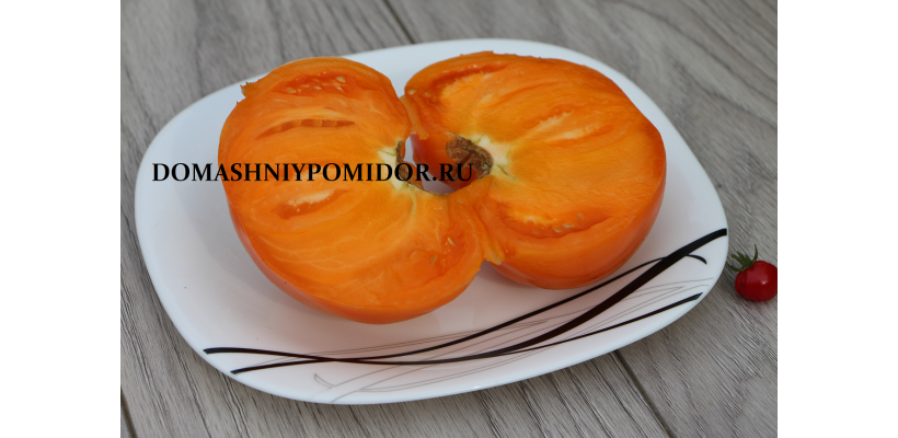Оранжевый монстр Флэтхед ( Flathead Monster Orange, США)