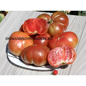 Коллекция томатов - карлики- гномы ( Dwarf Tomato Project)