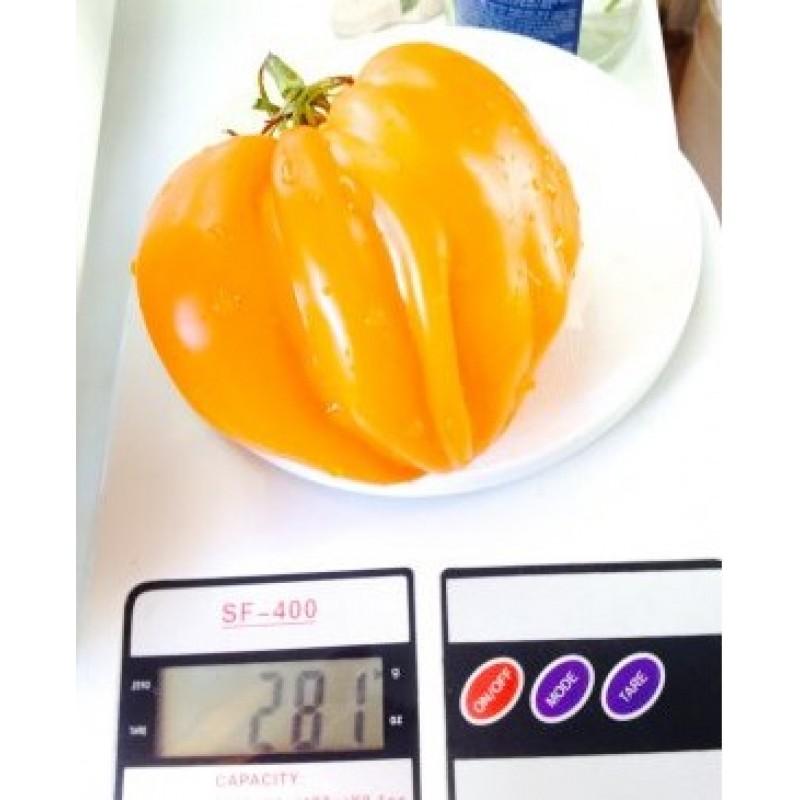 Новые сорта томатов на 2019 год новые фото