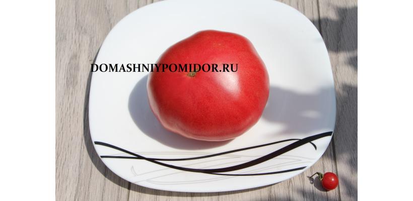 Демидовский
