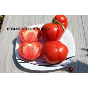 Итальянский семейный ( Italian Heirloom, США)