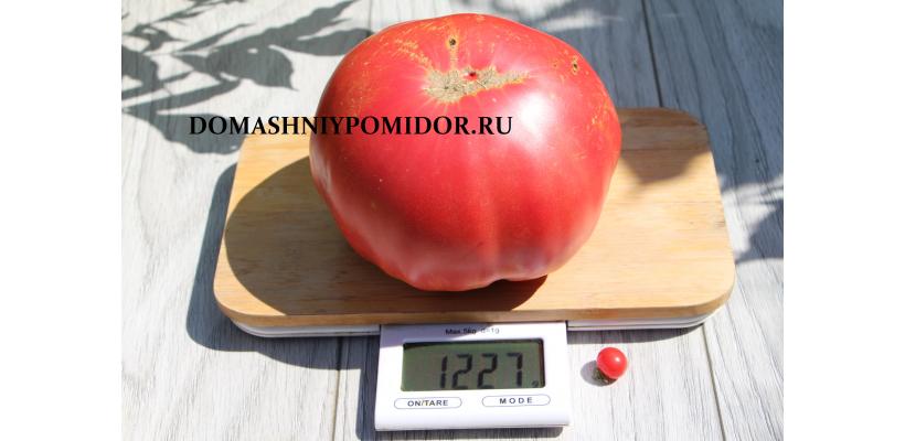 Яблочный Малиновый ( Минусинский) 1227гр.