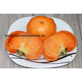Регби Оранжевый ( Rughy Orange, США)