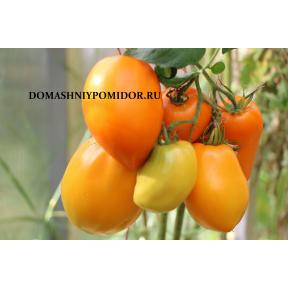 Стаканы оранжевые из Риги