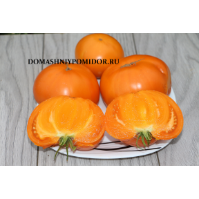 Оранжевый Горы Барнс ( Barnes Mountain Orange, США)