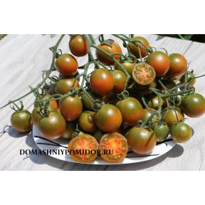 Злая Маслина ( Evil Olive, США)