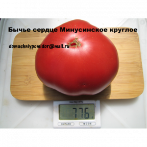 Бычье сердце Минусинское круглое