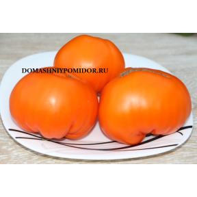 Белокурихинские оранжевые
