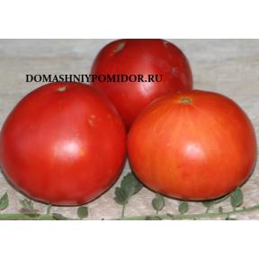 Красный Градински ( Cherven Gradinski, Болгария )