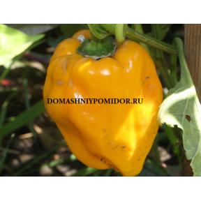 Хаммер желтый