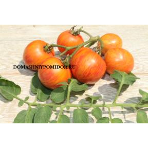 Полосатый Ананас ( Pineapple Striped, Болгария)
