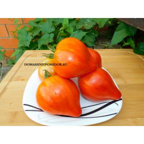 Козула 203 ( Kozula 203, Lnisno x 17 różowy płaski ze Steak Sandwich, Польша)