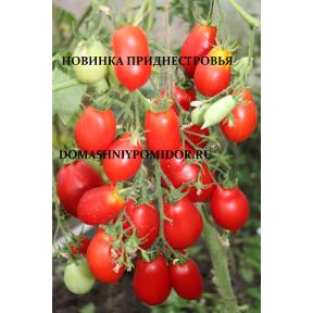 Новинка Приднестровья