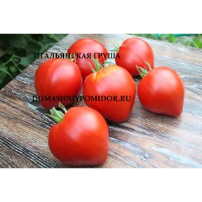 Итальянская Груша ( Italian Pear, США)