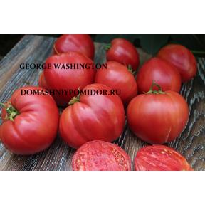 Джорж Вашингтон ( George Washington, США)