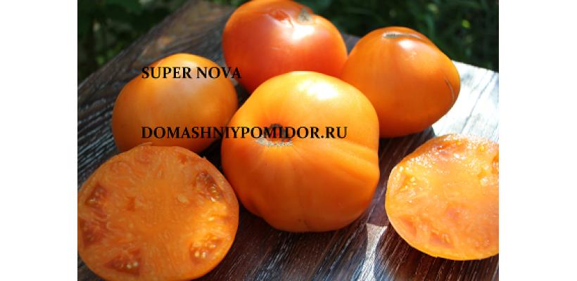 Сверхновая звезда ( Super Nova, США )