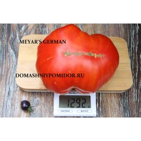 Немецкий Меяра ( Meyar' s German, США)