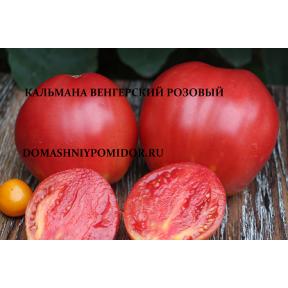 Кальмана Венгерский розовый ( Kalman's Hungarian Pink, США )