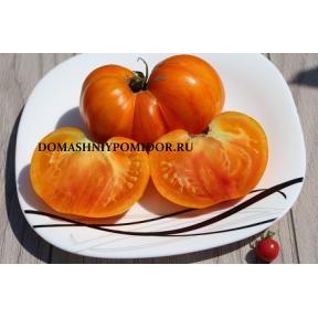 Оранжевый джаз ( Orange Jazz, США)
