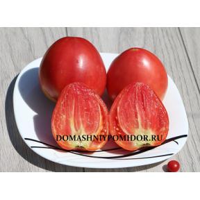 Земляника Немецкая красная ( German Red Strawberry, США)