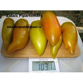 Зелёный перцевидный томат ( Zalais Pipartomats, Латвия)