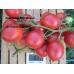 Коллекция томатов- Засолочные сорта
