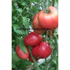 Красная Немецкая клубника ( малиновая)