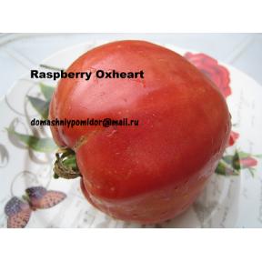 Малиновое Бычье Сердце ( Raspberry Oxheart, США)