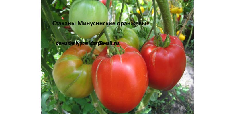 Стаканы Минусинские оранжевые