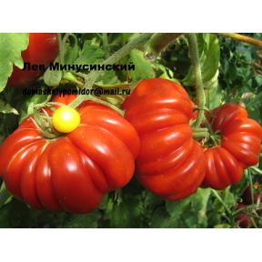 Лев Минусинский