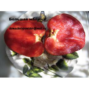 Большая малина ( Болгария )