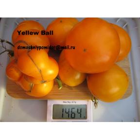 Жёлтый шар ( Yllow Ball )