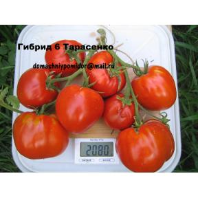 Гибрид 6 Тарасенко